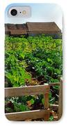 Vegetable Farm IPhone Case by Carlos Caetano
