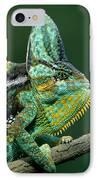 Veiled Chameleon Chamaeleo Calyptratus IPhone Case by Ingo Arndt