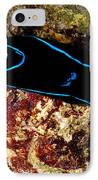 Velvet Sea Slug IPhone Case
