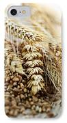 Wheat Ears And Grain IPhone Case by Elena Elisseeva