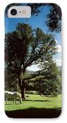 White Horse At Powerscourt, Co Wicklow IPhone Case by The Irish Image Collection