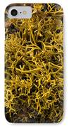 Wig-wrack Seaweed IPhone Case by Bob Gibbons