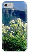 Wild Angelica IPhone Case by James Steinberg and Photo Researchers