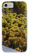 Wine Harvest IPhone Case by Garry Gay