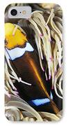 Yellowtail Anemonefish In Its Anemone IPhone Case