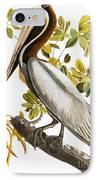 Audubon: Pelican IPhone Case