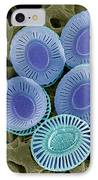 Calcareous Phytoplankton Plates, Sem IPhone Case