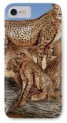 Cheetah Family Tree IPhone Case