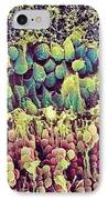Retina IPhone Case by Steve Gschmeissner