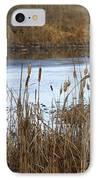 Winter Cattails IPhone Case by Carol Groenen