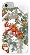 Audubon: Hummingbird IPhone Case by Granger