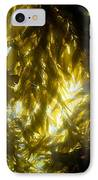 Giant Kelp Forest IPhone Case