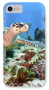 Hawksbill Turtle Feeding On Sponge IPhone Case by Karen Doody