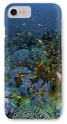 Reef Scene With Coral And Fish IPhone Case by Mathieu Meur