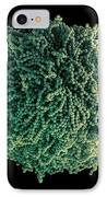 Fungal Spores, Sem IPhone Case by Steve Gschmeissner
