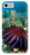 Thailand, Marine Life IPhone Case by Dave Fleetham - Printscapes