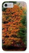 A Rose Between Two Thorns IPhone Case by DigiArt Diaries by Vicky B Fuller