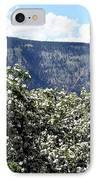 Apple Blossoms IPhone Case by Will Borden