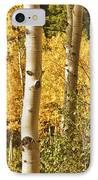 Aspen Gold IPhone Case by James BO  Insogna