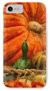 Autumn - Pumpkin - Great Gourds IPhone Case by Mike Savad