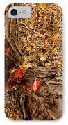 Autumn Fall IPhone Case