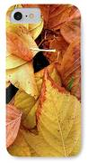 Autumn Leaves IPhone Case by Carlos Caetano