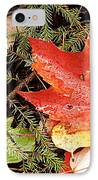Autumn Leaves IPhone Case by Larry Ricker