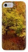 Autumn Palette IPhone Case by Carol Cavalaris