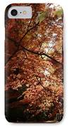 Autumn Sunshine Poster IPhone Case by Carol Groenen