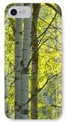 Autumn Through The Trees IPhone Case