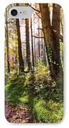 Autumn Trail IPhone Case