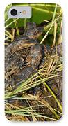 Baby Alligators IPhone Case