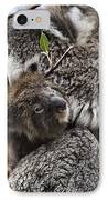 Baby Koala V2 IPhone Case