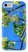 Backlit White Tree Blossoms IPhone Case