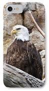 Bald Eagle - Portrait IPhone Case