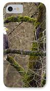 Bald Eagle On Mossy Branch IPhone Case by Sharon Talson