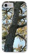 Bald Head Tree IPhone Case