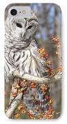 Barred Owl Portrait IPhone Case by Cindy Lindow