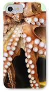 Beautiful Octopus IPhone Case by Marilyn Hunt