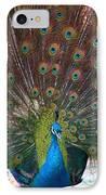 Beautiful Peacock IPhone Case