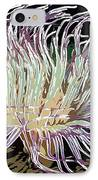 Beautiful Sea Anemone 1 IPhone Case