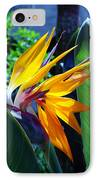 Bird Of Paradise IPhone Case by Susanne Van Hulst