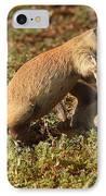 Black-tailed Prairie Dogs Wrestling Around IPhone Case