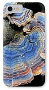 Blue Turkeytail Fungi IPhone Case by Joshua Bales