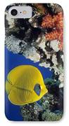 Bluecheek Butterflyfish IPhone Case by Georgette Douwma