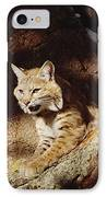 Bobcat Lynx Rufus Portrait On Rock IPhone Case