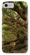 Branches And Roots IPhone Case by James Eddy