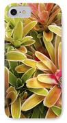 Bromeliad Brightness IPhone Case by Ron Dahlquist - Printscapes