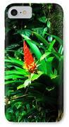 Bromeliads El Yunque  IPhone Case by Thomas R Fletcher