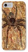 Brown Fishing Spider IPhone Case by Joshua Bales